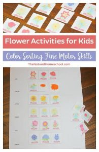 Flower Activities for Kids: Printable Color Sorting Fine Motor Skills