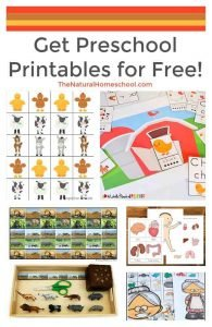 Get Preschool Printables for Free!