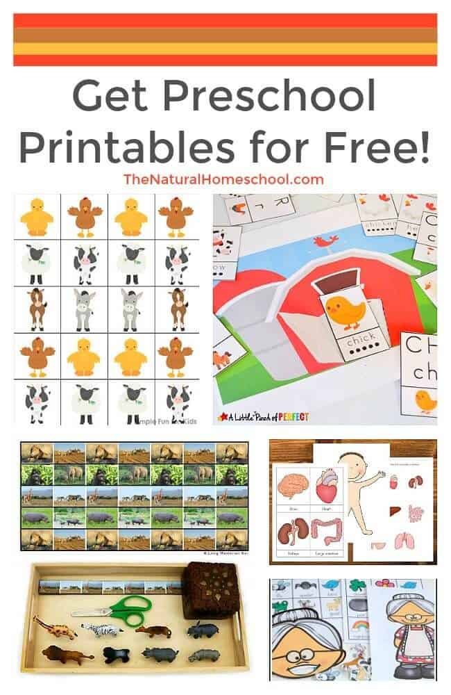 This is a great list of posts that bring you beautiful advice to make Get Preschool Printables for Free! a wonderful experience. Include your children in the reading. What do they think?