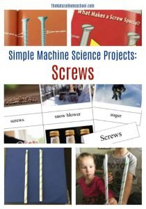Simple Machine Science Projects: Screws {Printable 3-Part Cards}