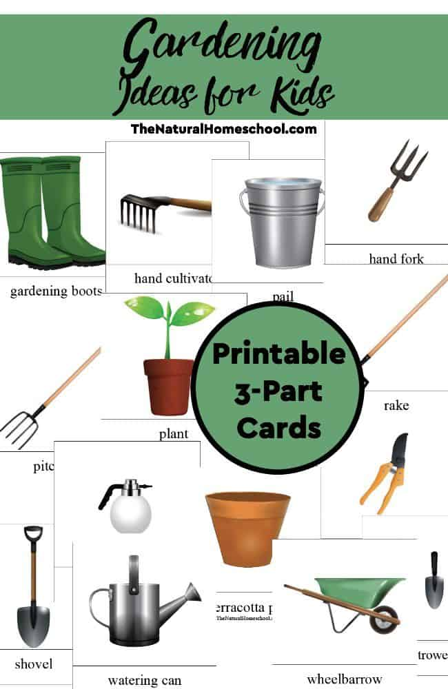 Gardening ideas for kids printable 3 part cards the for Gardening tools list pdf