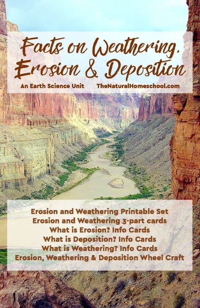 Venture into the wonderful world of Facts on Weathering, Erosion & Deposition! This amazing Earth Science bundle is perfect for an in-depth and fun unit!