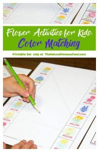 Flower Activities for Kids: Color Matching {Printable Set}