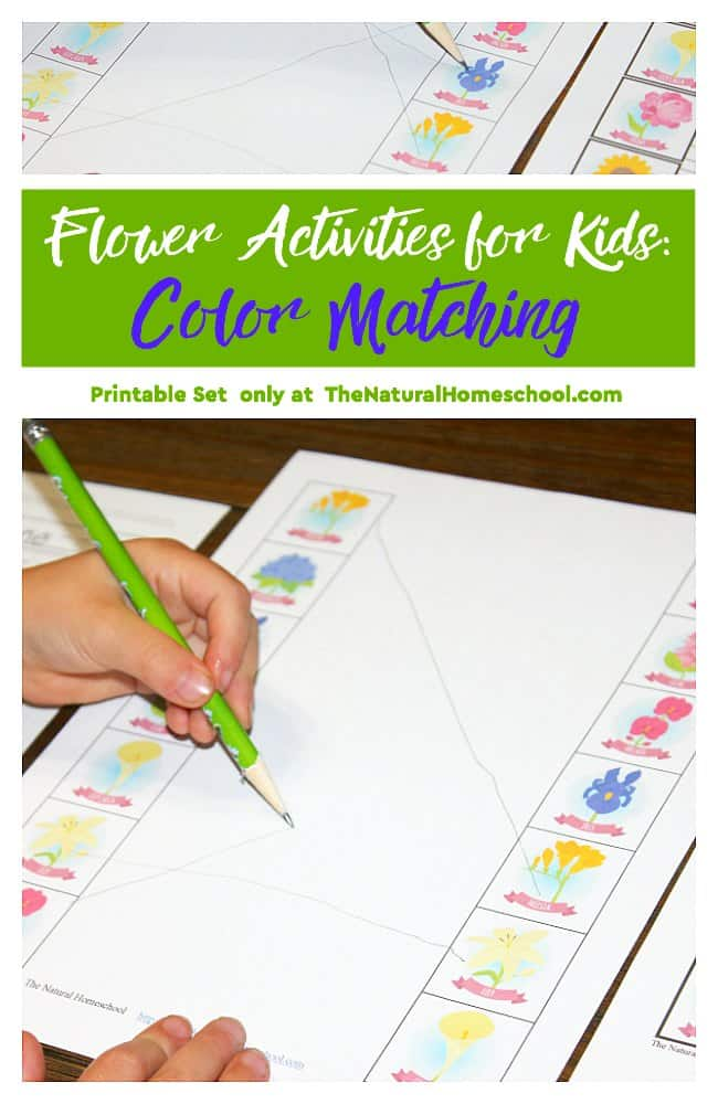 Flower Activities for Kids: Color Matching {Printable Set} - The ...