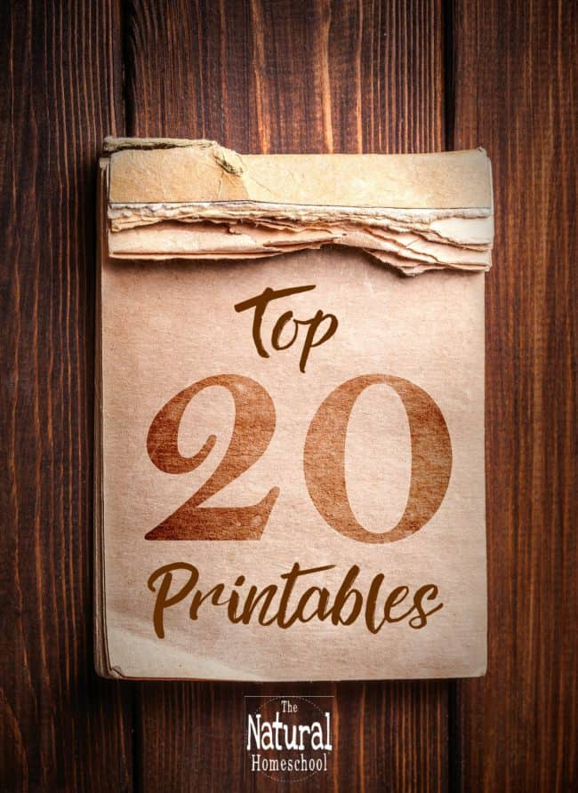 We have finally put together our top 20 printables that are the most popular and most downloaded sets so far! It is an amazing bundle! Come and take a look!