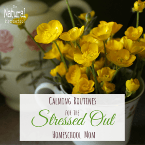 Calming Routines for the Stressed Out Homeschool Mom