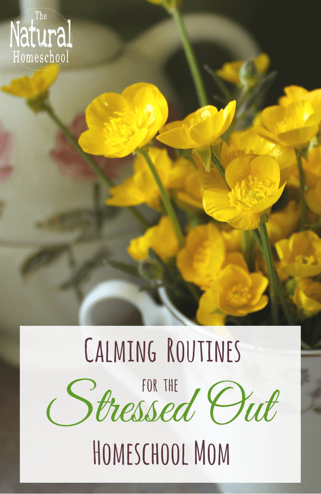 This is a great post where I share some wonderful and Calming Routines for the Stressed Out Homeschool Mom