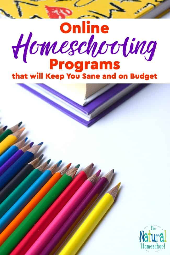 We are so excited to be starting our homeschool year soon and since I've been looking around for the best programs and deals out there, I couldn't wait to share with you what I found.
