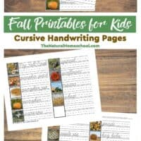 Fall Printables for Kids - Cursive Handwriting Pages