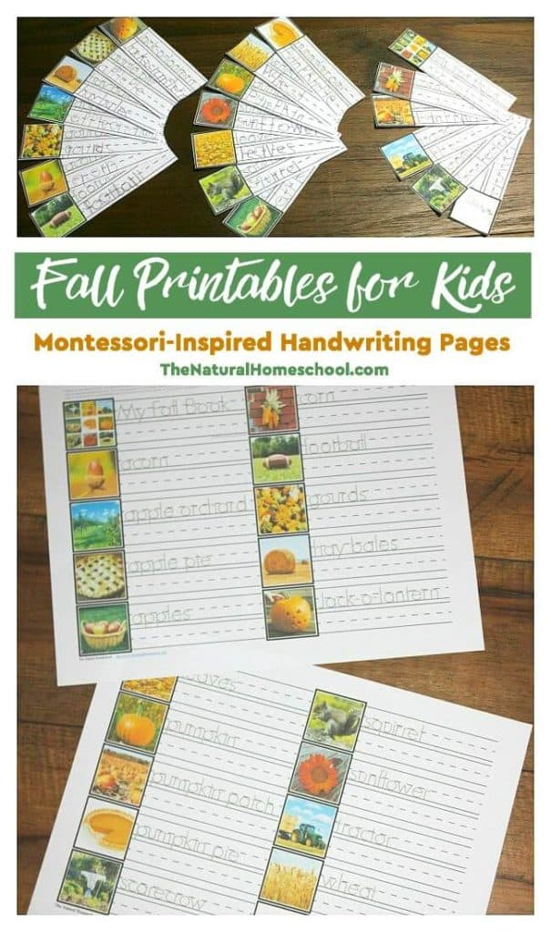 In this post, I am super excited to share with you some beautiful Fall printables for kids! It is a set of Montessori-Inspired Handwriting Pages that will introduce children to Fall words, they will help practice handwriting and also make a nice book out of them.