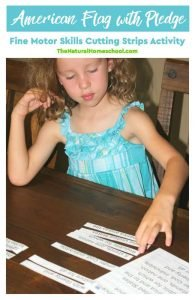 American Flag with Pledge – Fine Motor Skills Cutting Strips Activity