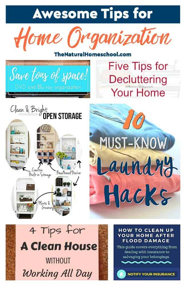 This is an awesome list of posts that bring you beautiful advice to make Awesome Tips for Home Organization a wonderful experience. Include your children in the reading. What do they think?