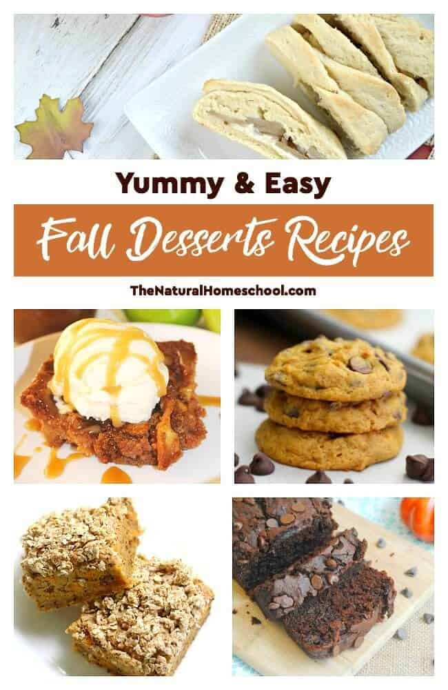 This is an awesome list of posts that bring you beautiful advice to make Yummy & Easy Fall Desserts Recipesa wonderful experience. Include your children in the reading. What do they think?