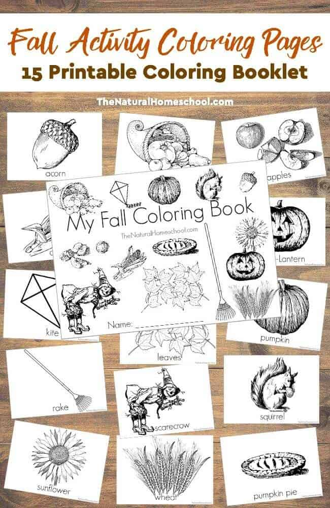 in this post we are absolutely happy to share with you some beautiful fall printables
