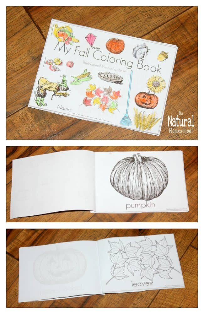 In this post, we are absolutely happy to share with you some beautiful Fall printables for kids! It is a set of awesome Fall Activity Coloring Pages that will help introduce children to Fall words, they will help practice their fine motor skills, will be a great seasonal Art activity and also make a nice booklet out of them.