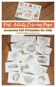 Fall Activity Coloring Pages – Awesome Fall Printables for Kids