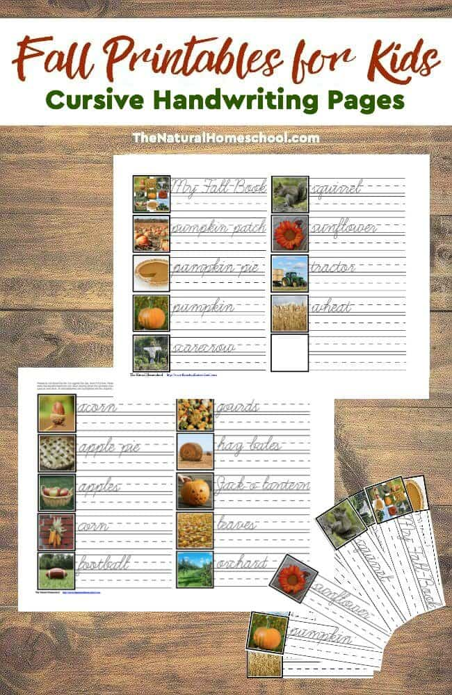 It is a set of Fall Printables for Kids - Cursive Handwriting Pages that will introduce children to cursive Fall words, they will help practice handwriting and also make a nice book out of them.