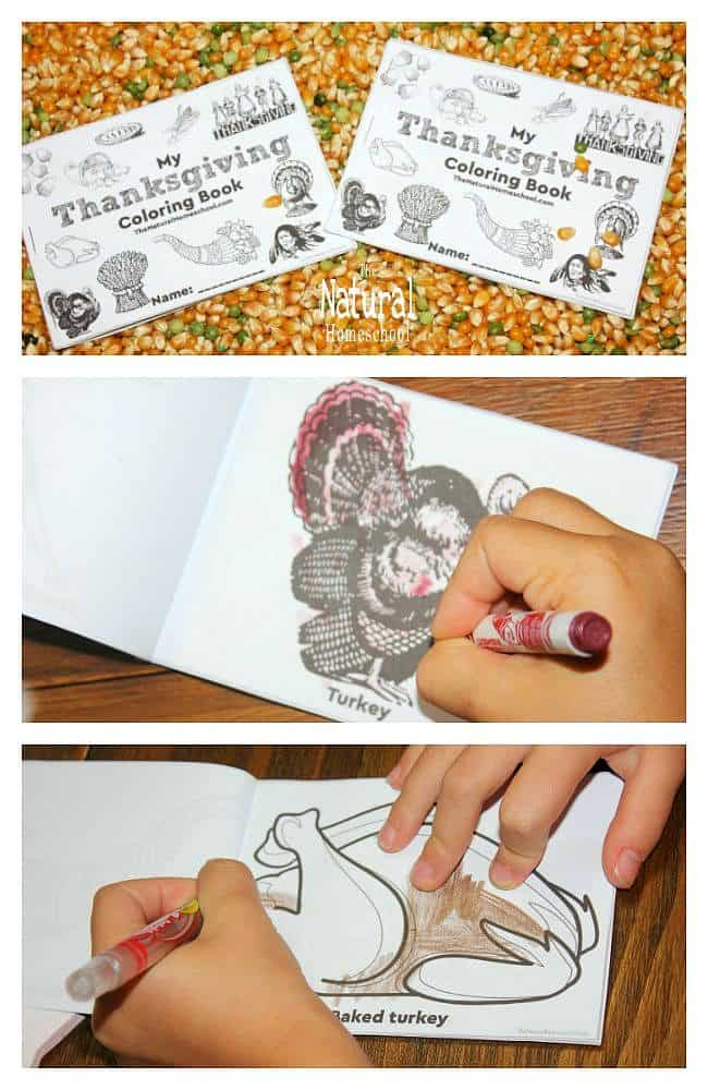 Thanksgiving is also a special holiday that we celebrate in Fall. In this post, we share a wonderful printable Thanksgiving Coloring Pages Activity that your kids will love!