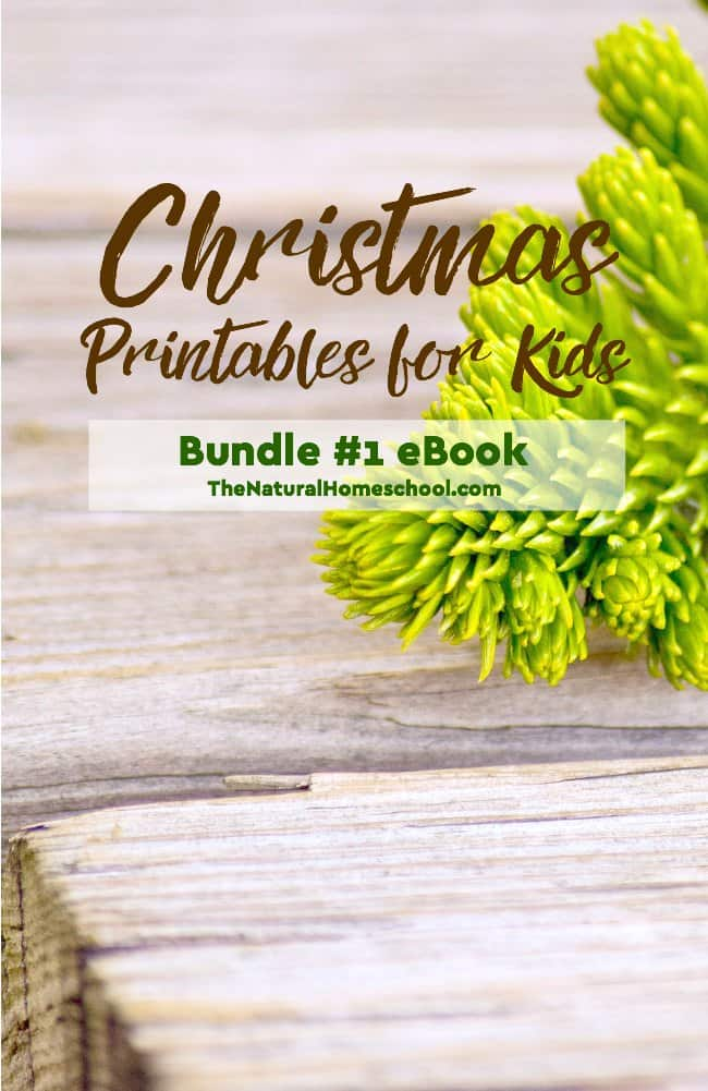 What an excellent set of Christmas Printables for Kids! Come take a look at how much kids will love these activities! Your eBook comes with all the lessons, all the ideas and all the printables!