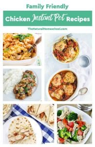 Family Friendly Chicken Instant Pot Recipes