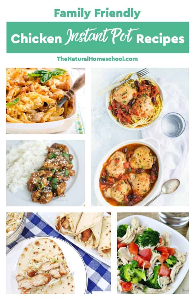 In this post, we have a fantastic list of family friendly chicken Instant Pot recipes that you and your whole family will LOVE!