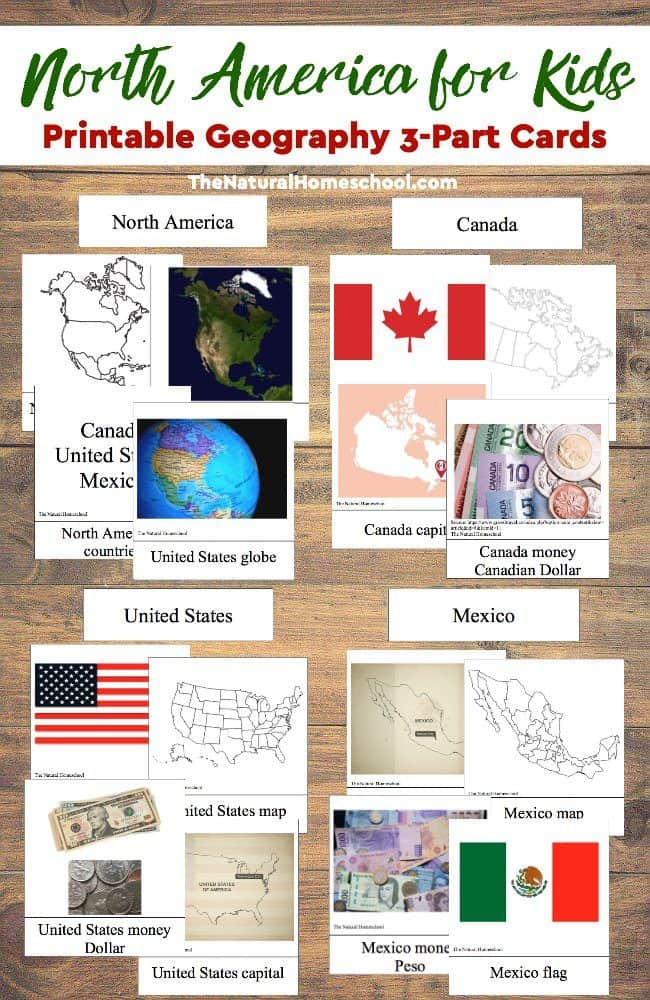 We love lessons on North America for kids! North America consists of several countries, but this lesson focuses on Canada, the United States and Mexico. There are map activities for kids and information about the three countries in the form of 3-part cards.