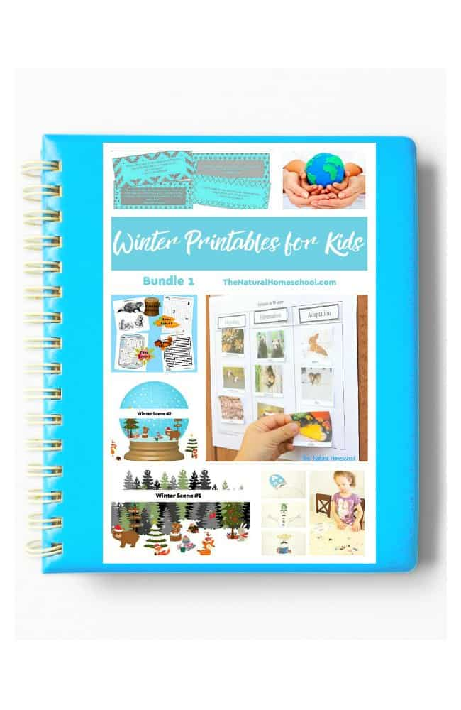 In this post, you will have a chance to see our awesome Winter Lessons and Printables Bundle 1 eBook! Take a look at what this includes and get it for your kids today!
