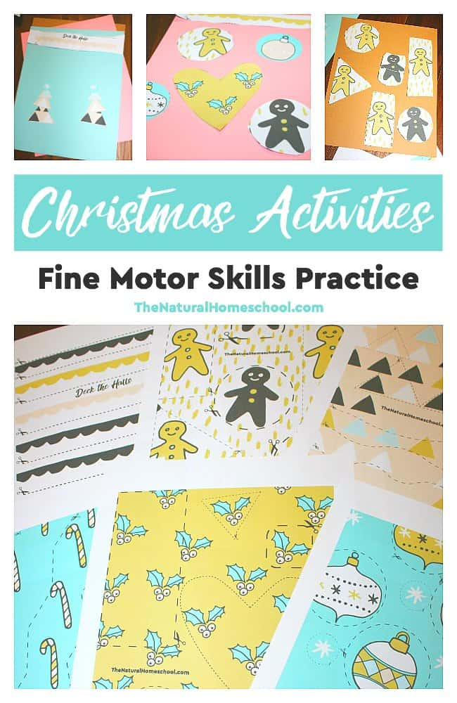 Christmas Activities & Fine Motor Skills Practice Printable - The ...