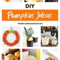 DIY Pumpkin Ideas for Fall