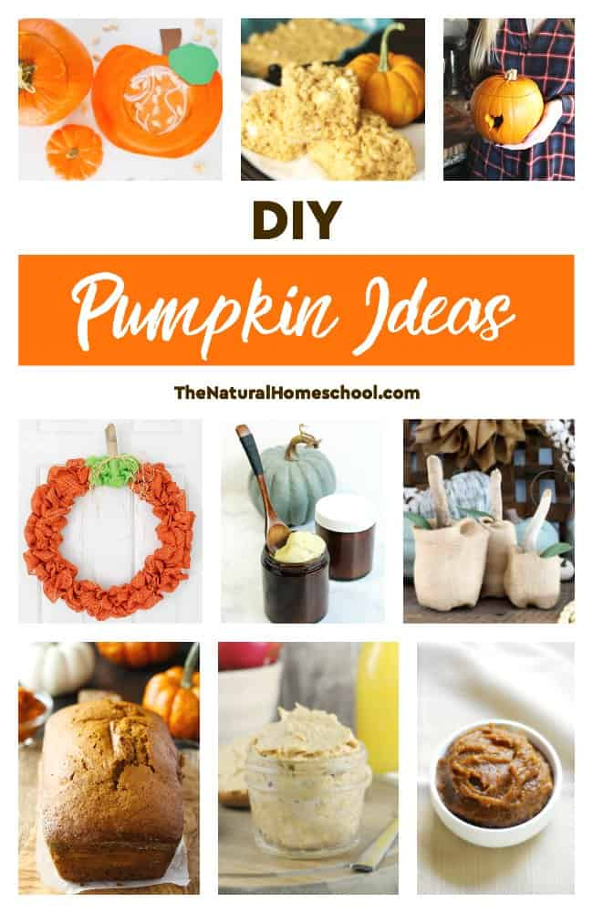This is an awesome list of posts that bring you beautiful advice to make DIY Pumpkin Ideas for Fall a wonderful experience. Include your children in the reading. What do they think?