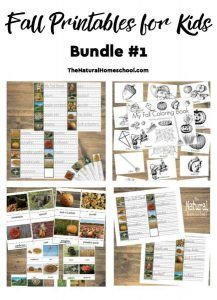Fall Printables for Kids with Lessons and Ideas eBook
