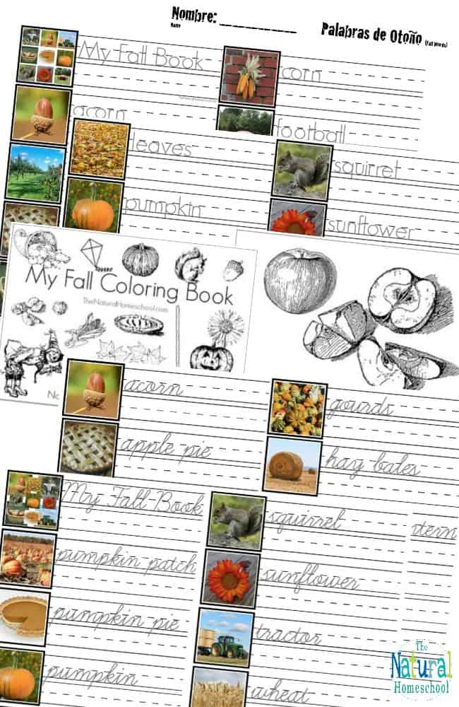 These are great Fall Printables for Kids in eBook form so you can get all of the details on how the lessons are taught and how the printables are used during those lessons!