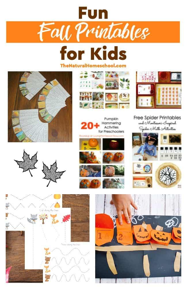 Fun Fall Printables for Kids - The Natural Homeschool