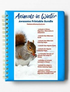Animals in Winter – Printable Bundle eBook #1