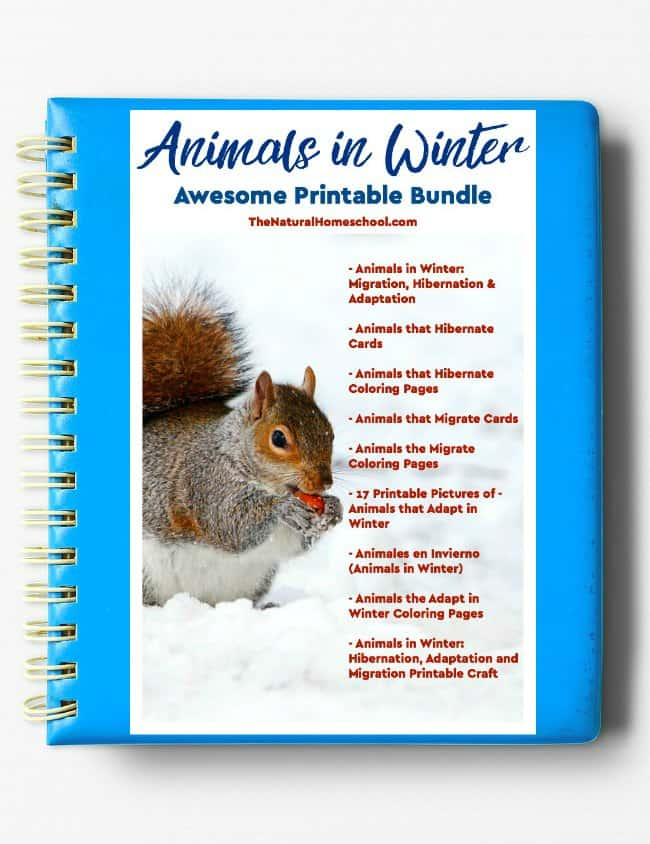 Welcome to our Animals in Winter bundle eBook! Take a look at how awesome this bundle is! You kids will enjoy it.