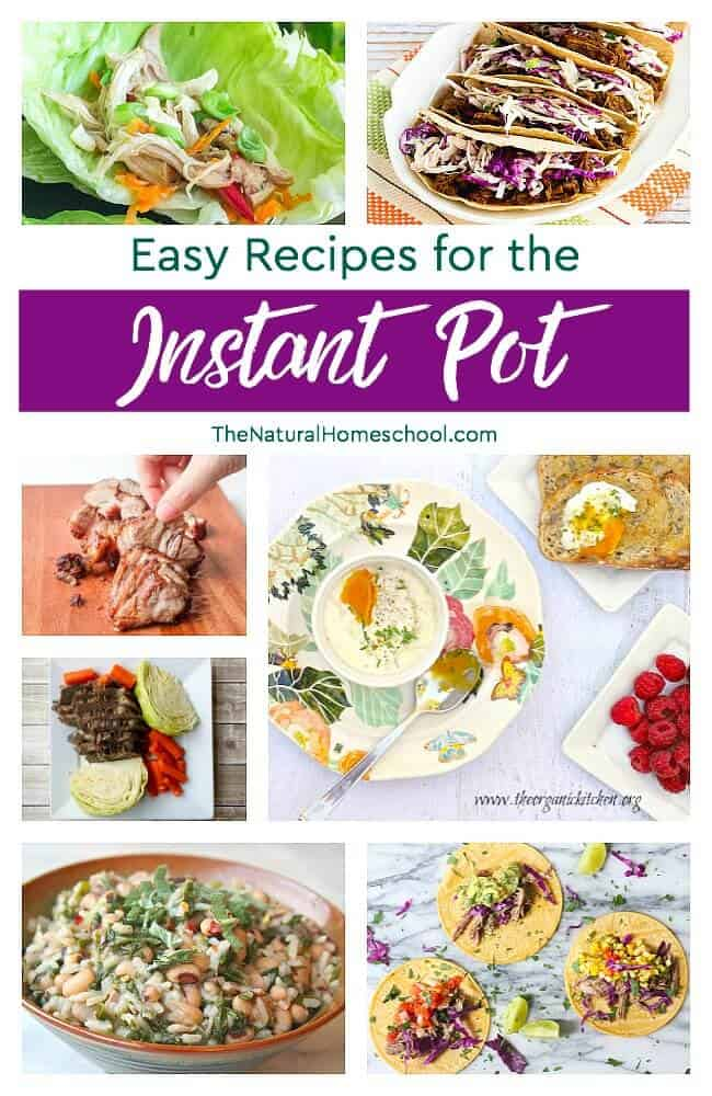 In this post, I will be sharing with you some of the most awesome Instant Pot meal recipes out there! Come take a look!