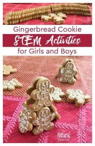 Gingerbread Cookie STEM Activities for Girls and Boys