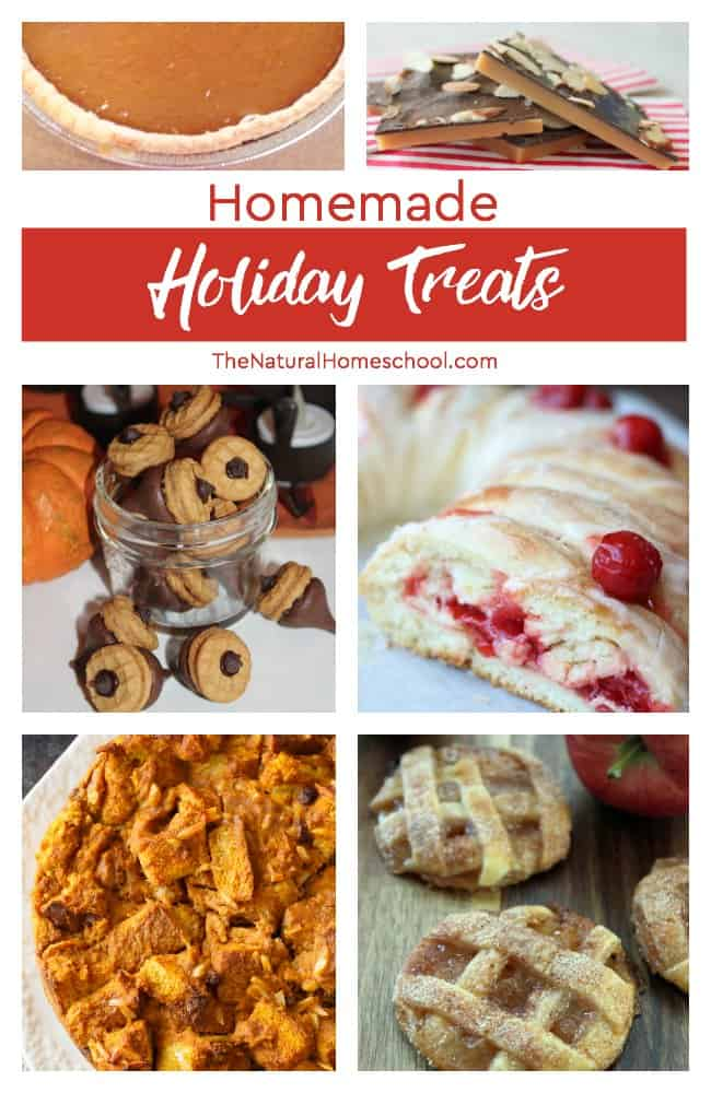This is an awesome list of posts that bring you beautiful advice to make Homemade Holiday Treats a wonderful experience.