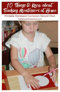 10 Things to know about teaching Montessori at home – Montessori Curriculum Free Download