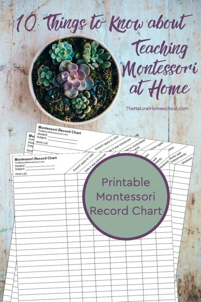 In this post, we will discuss 10 Things to know about teaching Montessori at home and give you a Montessori Curriculum Free Download of a very handy record chart that you can use daily to stay organized and on track.