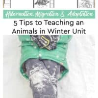 5 Tips to Teaching and Animals in Winter Unit - Printable Hibernation, Migration and Adaptation Notebooking Pages