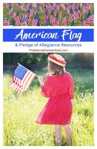 American Flag & Pledge of Allegiance Resources