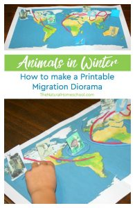 Animals in Winter ~ How to make a Migration Diorama {Printables}