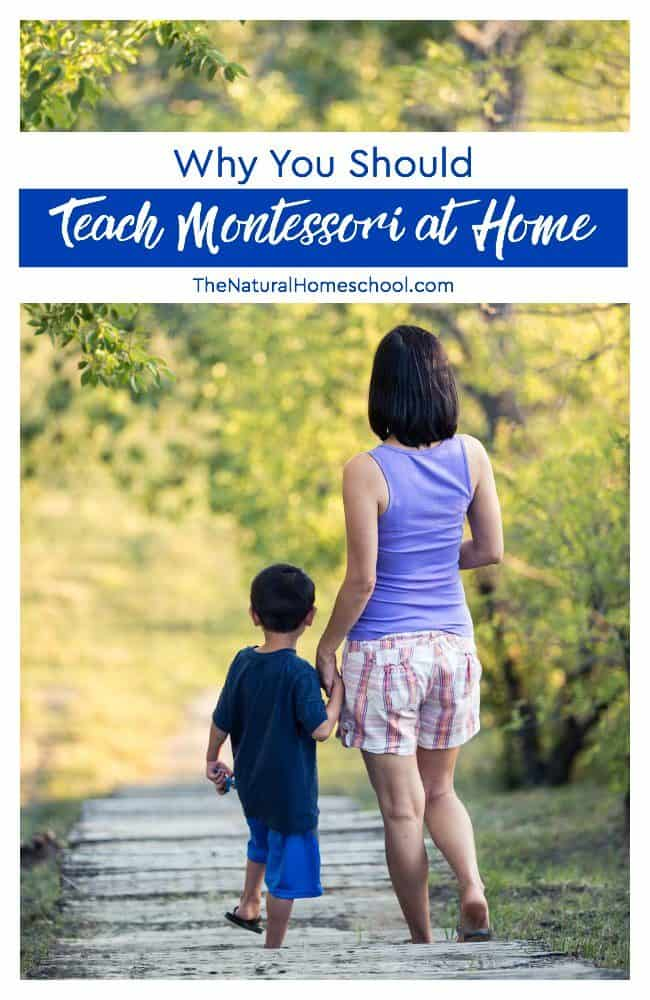 Let me give you a list of ten reasons why you should teach Montessori at home. Trust me, you will enjoy this list.
