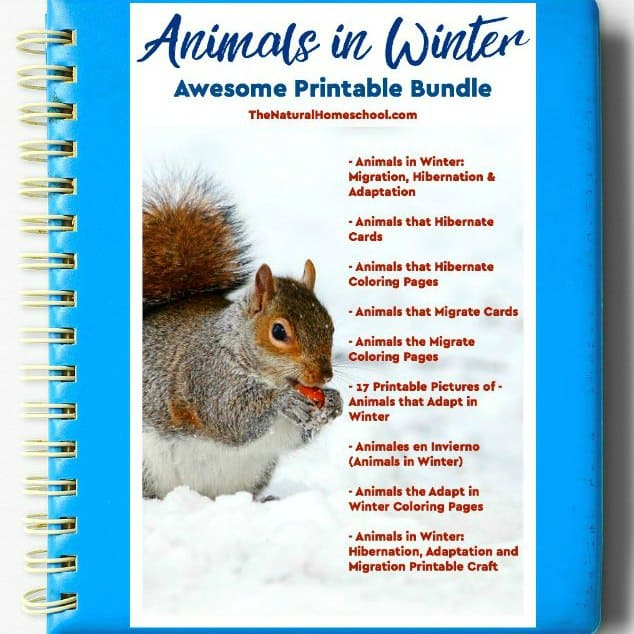 https://www.thenaturalhomeschool.com/animals-in-winter-printable-bundle-ebook-1.html