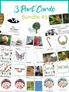 Fantastic Montessori 3-Parts Cards Bundle #3