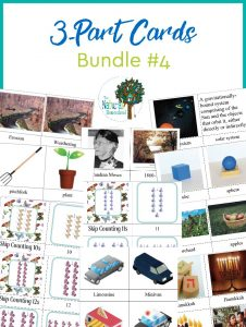 The Best Montessori 3-Part Cards ~ Bundle 4