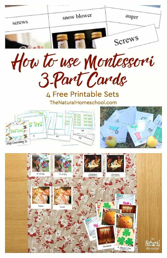 Begin this activity with kids by following the standard Montessori Method rules for 3-part cards. So keep reading on so you can learn how to use Montessori 3-Part Cards.