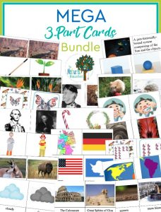 The Best Montessori 3-Part Cards ~ MEGA Bundle ~ 48 Sets!