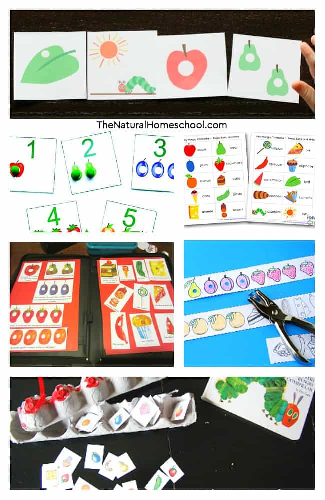 In this post, we will share with you a least of 25+ The Very Hungry Caterpillar printables & ideas for kids to expound on learning about this wonderful children's book!